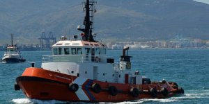 Wellington Harbor Tug, Gibraltar and Spain, for ship to ship transfer, dry docking, dockage